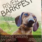 Dog days out: Riverside Barkfest & Dogtober Art Market